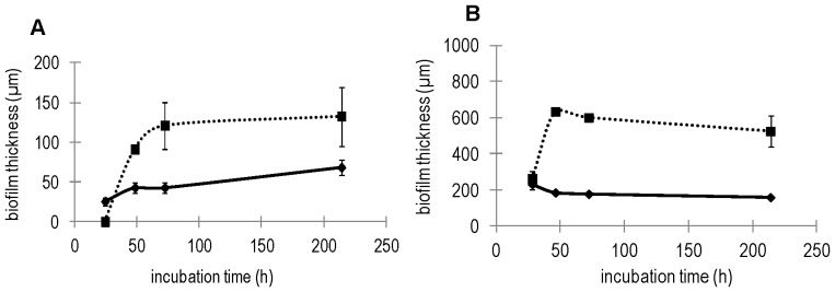 Biofilm (pellicle) thickness at different time points during growth in (A) Czapek (———), Czapek + sucrose (▪ ▪ ▪ ▪ ▪); (B) MSgg (———), MSgg + sucrose (▪ ▪ ▪ ▪ ▪). The errors represent standard deviation of the mean (n≥4).