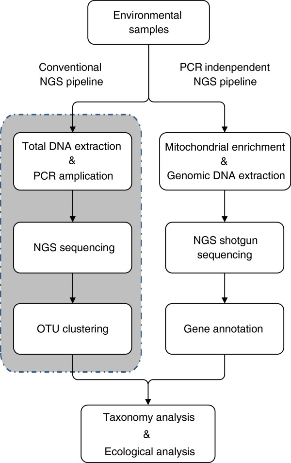 Schematic pipelines of conventional and <t>PCR-independent</t> NGS <t>biodiversity</t> analyses.