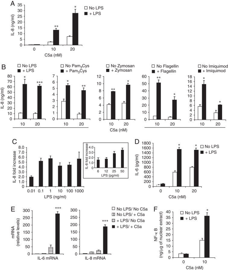 Sensitivity to C5a of PBMCs pre-exposed to TLR ligands. (A–C) Levels of IL-8 in culture supernatants of PBMCs (1.5×10 5 /well) (A) stimulated for 14 h with the indicated concentrations of C5a and (B) after washing and re-culture following pre-exposure (14 h) to <t>LPS</t> (100 pg/mL or as indicated), Pam 3 Cys (100 ng/mL), Zymosan (1 μg/mL), <t>Flagellin</t> (5 μg/mL), Imiquimod (3 μg/mL) or mock-pre-exposure (no TLR ligand). IL-8 concentrations were estimated by subtracting the background levels of IL-8 present in cultures not activated with C5a and pre-exposed or not to TLR ligands from the corresponding C5a-activated samples (IL-8 background levels (ng/mL): No ligand/No C5a, 1.6±0.7; +LPS, 2.3±1.2; +Pam 3 Cys, 1.5±0.6; +Zymosan, 1.3±0.9; +Flagellin, 6.9±2.5; +Imiquimod, 5.3±1.1; n ≥4). (C) IL-8 fold increases were determined by comparing IL-8 levels – after background subtraction – between C5a-stimulated (10 nM) cell samples pre-exposed and not pre-exposed to LPS. (D) Levels of IL-6 in culture supernatants of PBMCs stimulated for 14 h with the indicated concentrations of C5a, after washing and re-culture following pre-exposure to LPS. (E and F) Determination of (E) IL-6 and IL-8 mRNA levels in RNA samples and (F) NF-κB concentrations in the nuclear extracts of PBMCs pre-exposed or not to LPS and subsequently stimulated with C5a as described for A–D. (E) mRNA levels are relative to control (No LPS/No C5a). Results are from one experiment (+SD) representative of at least four for each ligand (A, B) or three (C–F). * p