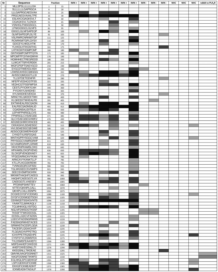 Epitope Mapping of PLA 2 R Peptides with anti-human IgG 4 . Grey scale heat map representation of results from SPOT used to detect PLA 2 R epitopes. Peptide membranes were probed with 10 randomly selected IMN samples that had previously been tested by IIF-CBA for anti-PLA 2 R antibodies (7 positive (IMN+) and 3 negative (IMN-)), as well as 5 normal healthy controls (NHC). The positive control rabbit antibody to PLA 2 R reacted with the expected peptide used as the immunogen. Consensus epitopes and their respective PLA 2 R domains derived from this analysis are illustrated in Figure 3 and summarized in Table 1 .