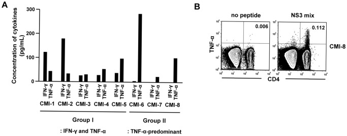 Cytokine profile of HCV-specific T cells in seronegative, aviremic hemodialysis patients. (A) After stimulating PBMCs with an epitope peptide or a peptide mix for 3 days, culture supernatant was harvested, and the concentrations of IFN-γ and TNF-α determined in the culture supernatant by CBA. There are two groups of patients in terms of cytokine profile: group I, patients with IFN-γ and TNF-α responses; group II, patients with TNF-α-predominant responses. (B) TNF-α ICS was performed in the patients of group II. FACS dot plots are representative data from two patients, CMI-7 and CMI-8.