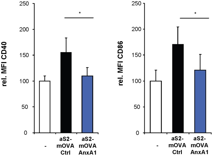 Annexin A1 inhibits DC activation in vivo . Apoptotic, mOVA-expressing Drosophila Schneider cells (aS2-mOVA) transfected with annexin A1 (AnxA1) or a control plasmid (Ctrl) were injected into mice. After 2 days, DC in lymph nodes of naïve (−) and S2-injected mice were analyzed for CD40 and CD86 expression by flow cytometry. Shown are quantifications of the MFI for CD40 and CD86 of total lymph node cells gated on CD11c + and MHC class II + cells *P