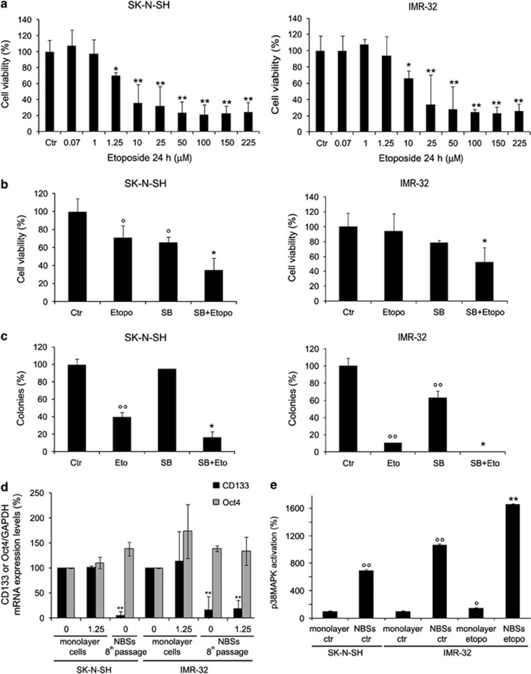 Effects of SB203580 (SB) cotreatment on viability, clonogenicity, CC133/Oct4 expression and p38MAPK activation in SK-N-SH and IMR-32 cells. ( a ) Cell viability. SK-N-SH (left panel) and IMR-32 (right panel) cells were exposed to increasing concentrations of etoposide (0.07–225 μ M) for 24 h. Histograms summarize quantitative data of means±S.D. of five independent experiments. * P