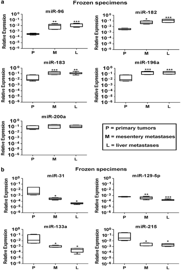 Quantitative real-time PCR (QRT-PCR) analysis validated the expression of the nine selected microRNA (miRNAs) from the first group of specimens. Total RNA was isolated from frozen specimens of three primary tumors (P), three mesentery metastases (M) and three liver metastases (L) to run QRT-PCR analysis. ( a ) Upregulated miRNA expression in metastatic disease compared with primary tumors. ( b ) Downregulated miRNA expression in metastatic disease compared with primary tumors. Results were plotted using the 2 −ΔΔCt method with RNU48 expression (set to 1) from each individual sample for normalization. Plotted results are mean±s.d. for triplicate wells. Significance was calculated by one-way analysis of variance (ANOVA) followed by Bonferroni test. * P