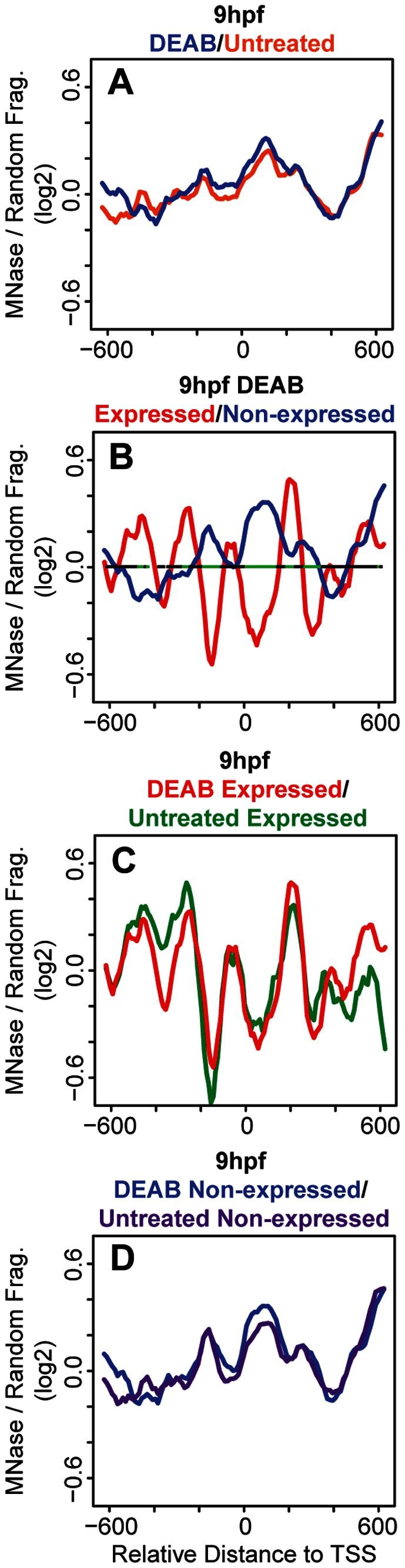DEAB treatment has little effect on nucleosome organization at hox promoters. (A–D) Average nucleosome density was calculated as in figure 1 . (A) Overlay of average nucleosome profiles for 37 hox promoters from DEAB-treated (blue line) and untreated (orange line) embryos at 9 hpf. (B) Overlay of nucleosome profiles for expressed (red line) and non-expressed (blue line) promoters in DEAB-treated embryos at 9 hpf. Nucleosome densities at expressed and non-expressed promoters were compared using a Wilcoxon Ranked Sum test and statistically significant differences (p