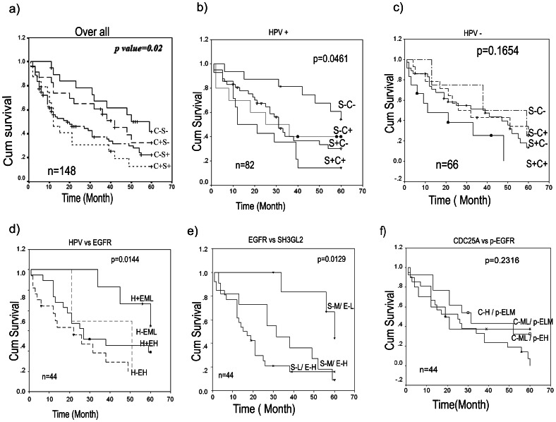 Kaplan–Meier analysis of survival (up to 5 years) of HNSCC patients. a) Co-alteration of CDC25A and SH3GL2 was significantly associated with poor overall survival (OS). b) The significant association with poor overall survival of patients having co-alterations of the genes was also seen in presence of HPV infection; however, co-alterations did not associate significantly with OS in absence of HPV infection (c). d) Poor survival was also seen of the patients having high EGFR expression irrespective of HPV infection. d) Similarly, reduced SH3GL2 expression and high EGFR expression was a predictor for poor OS. However f), protein expression of p-EGFR and CDC25A did not show any significant association with survival of the patients. Survival time was defined as the time from the date of surgery to the date of last follow-up, known recurrence or death (up to 5 years). n, total number of samples; C+/−, CDC25A deletion present/absent; S+/−, SH3GL2 alterations present/absent; H+/−, HPV infection present/absent; EH/ML, EGFR protein expression high/medium to low; S-L/MH, SH3GL2 protein expression low/medium to high; C-H/ML, CDC25A protein expression high/medium to low; p-EH/LM, p-EGFR protein expression high/low to medium.