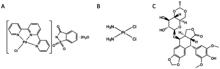 Chemical structures. (A) Palladium complex [PdCl(terpy)](sac)·2 H 2 O, (sac = saccharinate, and terpy = 2,2′:6′,2″-terpyridine). M = Palladium(II) (B) Cisplatin (C) Etoposide.