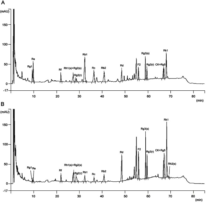 A chromatogram of (A) non-fermented red ginseng and (B) fermented red ginseng by Phellinus linteus ginsenosides using HPLC assay. The column configuration consisted of an IMtakt Cadenza CD-C18 (4.6×75 mm). The UV absorption was measured at 203 nm. Gradient elution was employed, using solvent A (10% acetonitrile) and solvent B (90% acetonitrile) at 40℃.