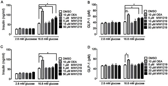 Effects of MW1219 on insulin and <t>GLP-1</t> secretion in vitro . The effect of MW1219 to stimulate insulin secretion in MIN6 cells was studied in 2.8 mM and 16.8 mM glucose (A). Influence of GPR119 knockdown on MW1219-induced insulin secretion (C). Effect of MW1219 on GLP-1 release in GLUTag cells (B). After siRNA treatment, the effect of MW1219 on GLP-1 release was determined with GLUTag cells (D). All data points were representatives of three independent experiments, determined in triplicate. *P