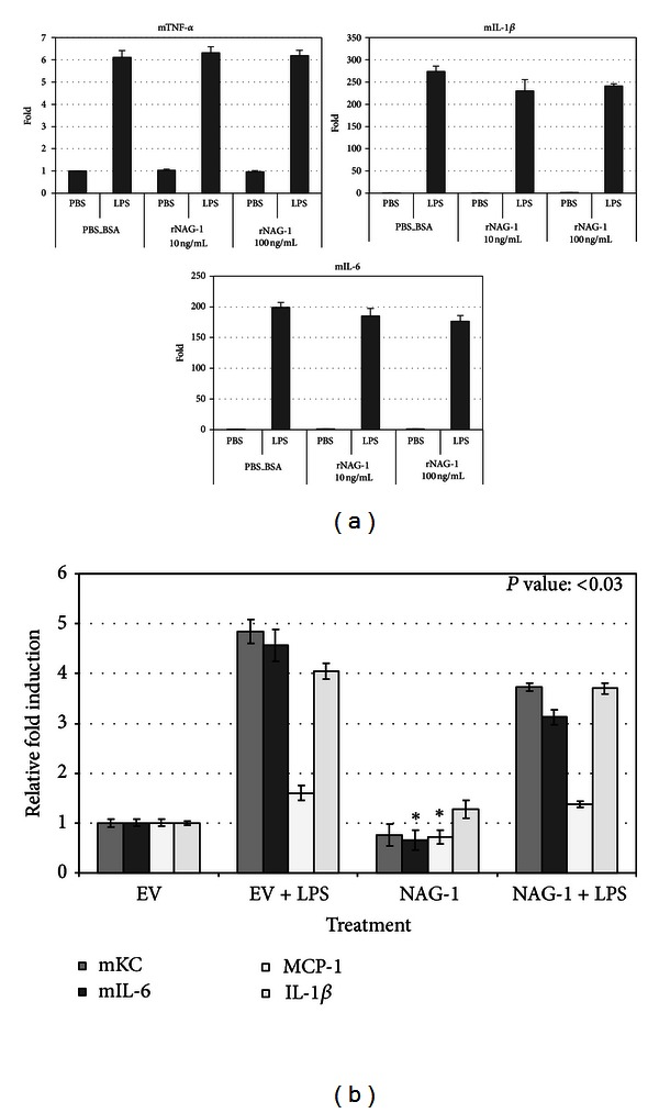 NAG-1 does not inhibit LPS-induced inflammatory cytokine formation in macrophages. (a) RAW 264.7 cells were plated in 60 mm dishes. After 24 hr, cells were treated with NAG-1 protein (R D) at the concentrations indicated for 5 hrs and then treated with LPS (5 ng/mL) for 20 hrs. RNA was isolated from the collected cells and used for real-time PCR analysis, using primers specific to the genes indicated. The data are expressed as fold increases compared to untreated cells. Error bars represent standard deviation. (b) RAW 264.7 cells were transfected with empty vector (−) or NAG-1 expression vector (+), and then the cells were treated with 1 μ g/mL LPS for 6 hours. RNA was extracted and used for real-time PCR analysis, using primers specific to the genes indicated, using m β -actin as a control gene. The data are expressed as fold increases compared to untreated cells. Error bars represent standard error.
