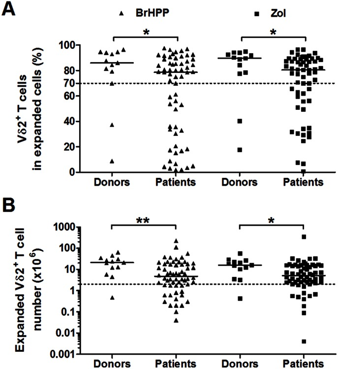 Proliferation of Vγ9Vδ2 <t>PBMCs</t> from <t>EOC</t> patients and from healthy female donors following BrHPP or zoledronate stimulation. Vδ2 + CD3 + cell frequencies among expanded cells ( A ) and Vδ2 + CD3 + cell numbers generated from 1×10 6 PBMCs ( B ) were measured at 14 days after BrHPP ( ▴ ) or zoledronate (Zol) ( ▪ ) stimulation. The results from n = 60 patient PBMCs and n = 13 donor PBMCs are shown.