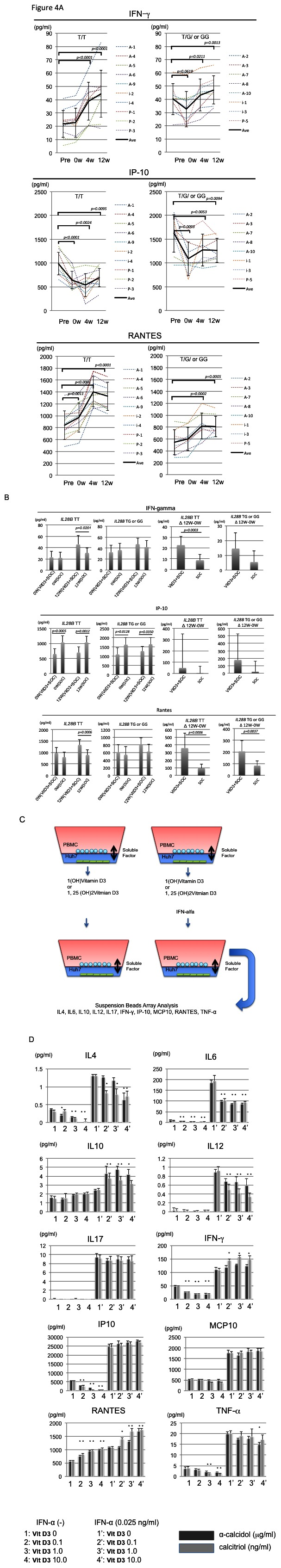 Cytokine profiles in the ex vivo and in vitro samples treated with vitamin D3. Sequential data of quantification of 3 cytokines (IFN-γ, IP-10 and RANTES) during 1(OH) vitamin D3 pre-treatment (pre vs 0w), 1(OH) vitamin D3/Peg-IFN/RBV therapy are shown (A). Dotted lines indicate the data of each subject. Black lines indicate the averaged data. Error bars indicate standard deviation. The data from IL28B (T/T) subjects or IL28B (T/G or G/G) subjects are shown in the independent graphs (A). Comparisons of the amounts of 3 cytokines (IFN-γ, IP-10 and RANTES) between the 1(OH) vitamin D3/PEG-IFN/RBV group (VitD3+standard of care (SOC)) and Peg-IFN/RBV group (SOC) at 0 weeks and 12 weeks after the start of Peg-IFN/RBV treatment are shown (B). Analysis of the changes in the amounts of the 3 cytokines (IFNγ, IP-10 and RANTES) during 12 weeks treatment of Peg-IFN/RBV is shown. Schema of in vitro -analysis of co-culture is shown (B). alfa-calcidol: 1(OH)vitamin D3 and calcitriol: 1,25(OH)vitamin D3 were used to analyze the cytokine production in vitro . Black bars indicate the data from samples treated with alfa-calcidol. Gray bars indicate the data from samples treated with calcitriol. *p