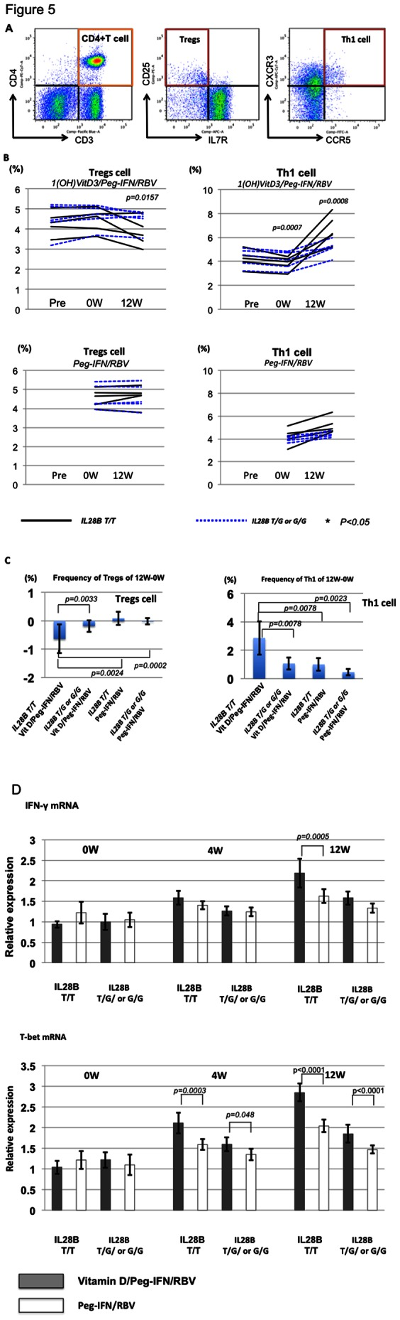 Comparison of Th1 and Tregs between 1(OH) vitamin D3/Peg-IFN/RBV and Peg-IFN/RBV. Representative dot plots of CD3 + CD4 + CD25 + IL7R − (Tregs) and CD3 + CD4 + CXCR3 + CCR5 + (Th1 cells) are shown. (A) Frequencies of Th1 and Tregs among the 4 groups (IL28B T/T vitamin D3/Peg-IFN/RBV, IL28B T/G or G/G vitamin D3/Peg-IFN/RBV, IL28B T/T Peg-IFN/RBV, and IL28B T/G or G/G Peg-IFN/RBV) are shown. (B) Comparison of the T-bet and IFN-γ mRNA expression between subjects treated with vitamin D3/Peg-IFN/RBV therapy and those treated with Peg-IFN/RBV therapy. Each group included 5 patients. Total mRNA was extracted from isolated CD4 + T cells. The relative expression levels are shown in bar graphs. The statistical analysis was carried out by independent student t -test.