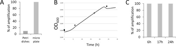 Efficiency of MNN5 gene amplification from liquid culture of modified strain. A ) Percentage of MNN5 amplification from 47 colonies picked on Petri dishes and 47 colonies picked from liquid cultures in micro-plates. B ) Growth curve in micro-plate (YPD medium), average of two colonies of YiMMOgène. The OD 600 was measured in a micro-plate reader. ♦: OD 600 after 6 hour culture (early exponential phase). ●: OD 600 after 17 hour culture (late exponential phase). ▄: OD 600 after 24 hour culture (early stationary phase). C ) Percentage amplification of MNN5 from 47 YiMMOgène after different culture times in micro-plate. All amplifications have been carried out with the Platinium Taq.