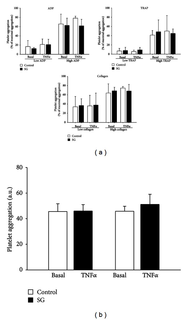 Inhibtion SHP-1 does not affect platelet aggregation in vitro and ex vivo . (a) In platelet-rich plasma (PRP) from healthy human volunteers SHP-1 inhibition by sodium stibogluconate did not increase platelet aggregation neither under basal conditions nor after pretreatment with TNF α (5 ng/mL, 4 h) upon stimulation with the platelet agonists ADP, collagen, or thrombin-receptor activating peptide (TRAP) in different concentrations (low ADP: 0.5–1 μ M; high ADP: 10 μ M; low collagen: 0.5–4 μ g/mL; high collagen: 10 μ g/mL; low TRAP: 1–1.5 μ M; high TRAP: 10–14 μ M; n = 9–12, each). (b) Treatment of animals with the SHP-1 inhibitor sodium stibogluconate (10 μ g/mL, 30 min) did not affect ADP-induced (6.5 μ M) platelet aggregation ex vivo , neither under basal conditions nor in TNF α -induced inflammation (TNF α 5 ng/mL, 4 h, n = 6 animals per group). SG: sodium stibogluconate, AU: arbitrary unite.