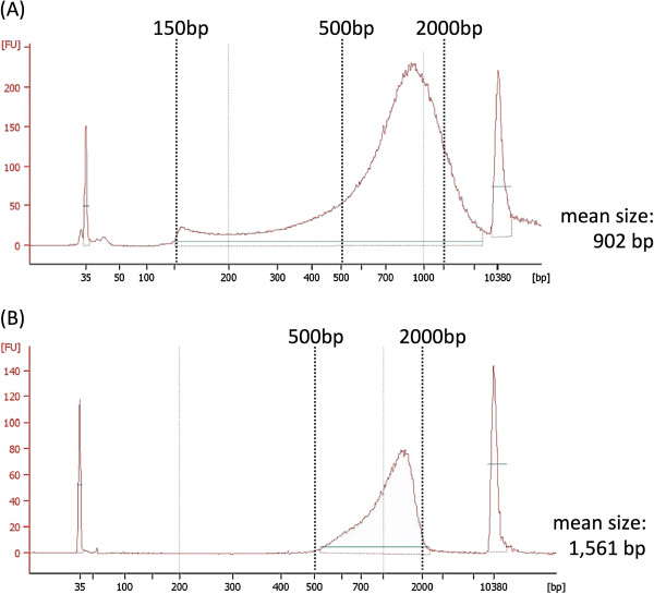 Size selection of the Nextera DNA libraries by agarose gel size selection. ( A ) Electropherogram of DNA library analyzed by 2100 Bioanalyzer. The library size of the Nextera DNA Sample Prep Kits was 150 bp to more than 10 kb (mean size: 902 bp). ( B ) Bioanalyzer electropherogram of a selected DNA library by cutting from the agarose gel. We selected large fragments with sizes ranging from 500 to 2,000 bp to remove short DNA fragments for effective HLA gene haplotype phasing. The size selection also determines an actual molar concentration for bridge PCR to generate clusters in flowcell, because DNA fragments with over 1.5 kb size are not efficiently amplified. The mean size of the selected fragments was 1,561 bp.
