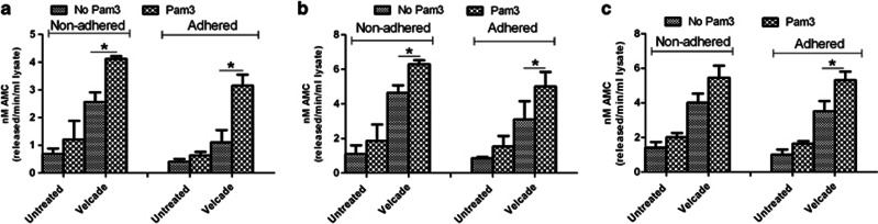 The effect of Pam3CSK4 and Pam3CSK4+Velcade on caspase-3 enzymatic activity in the presence or absence of FN in L363 ( a ), OPM-2 ( b ) and U266 ( c ) HMCLs. Caspase-3 activity was determined by the release of the fluorescent 7-amino-4-methylcoumarin (AMC) moiety following hydrolysis of the peptide substrate acetyl-Asp-Glu-Val-Asp-7-amido-4-methylcoumarin (Ac-DEVD-AMC) by the activated enzyme. Data represent calculated mean±s.e.m. of two separate experiments. * P