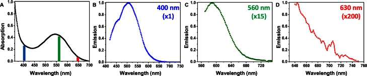 (A) Absorption spectrum of Vectashield, as well as normalized emission spectra measured at 3 different wavelengths: 400 nm (B), 560 nm (C) and 630 nm (D) with normalization factor indicated in the top right corner.