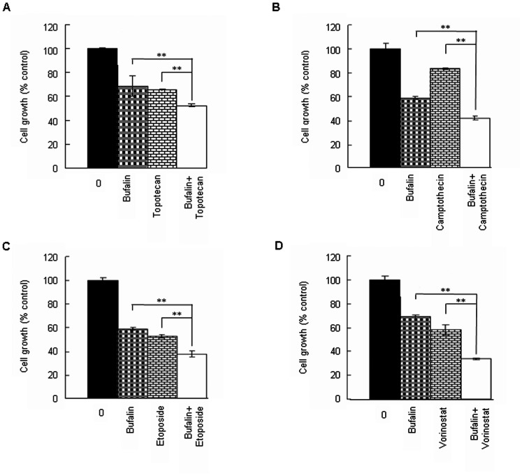 Bufalin enhances chemosensitivity of H929 cells. (A–D) H929 cells were treated with 10 nM bufalin alone, or in combination with 50 nM topotecan, 10 nM camptothecin, 2.5 µM etoposide, and 0.5 µM vorinostat, respectively for 48 h. Cell proliferation was measured by CCK8 assay. All values represent means ± S.D. of three independent experiments, each performed in triplicate (. ** P
