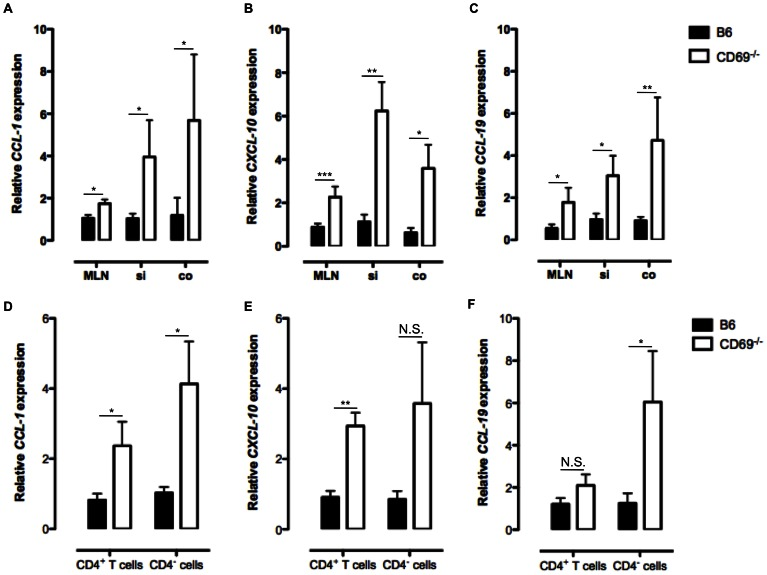 Absence of CD69 leads to the increased expression of CCL-1 , CXCL-10 and CCL-19 . RNA was isolated from the frozen mesenteric lymph nodes (MLN), small intestinal (si) and colonic (co) tissue samples or from sorted CD4 + and CD4 − spleen cells of non-treated B6 or CD69 −/− animals and reverse transcribed to complementary DNA. Relative expression of CCL-1 ( A and D ), CXCL-10 ( B and E ) and CCL-19 ( C and F ) genes compared to β-actin gene is analyzed by qRT-PCR. Mean (± SEM) for at least six mice per each strain is presented. *p≤0.05; **p≤0.005; ***p≤0.0005; N.S. – not significant.