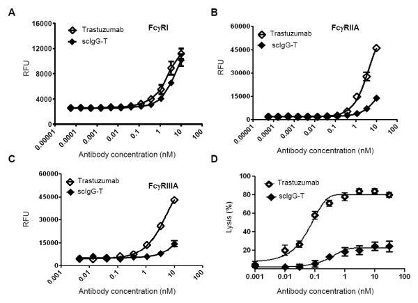 Trastuzumab and single hinge cleaved trastuzumab binding to Fcγ receptors and antibody-dependent cellular cytotoxicity activity . (A) Trastuzumab and single hinge cleaved trastuzumab (scIgG-T) binding to Fc gamma receptor (FcγR) I. (B) Trastuzumab and scIgG-T binding to FcγRIIA. (C) Trastuzumab and scIgG-T binding to FcγRIIIA. (D) Antibody-dependent cellular cytotoxicity (ADCC) activity induced by trastuzumab and scIgG-T using the high-HER2-expressing SKOV-3 ovarian cancer cells as target cells and human peripheral blood mononuclear cells (PBMC) as effector cells ( n = 3). Cell index was compared after treatment of trastuzumab and scIgG-T for 24 hours. Percentage of cell lysis calculated as: (cell index of control group - cell index of treatment group)/cell index of control group×100. RFU, relative fluorescence units.