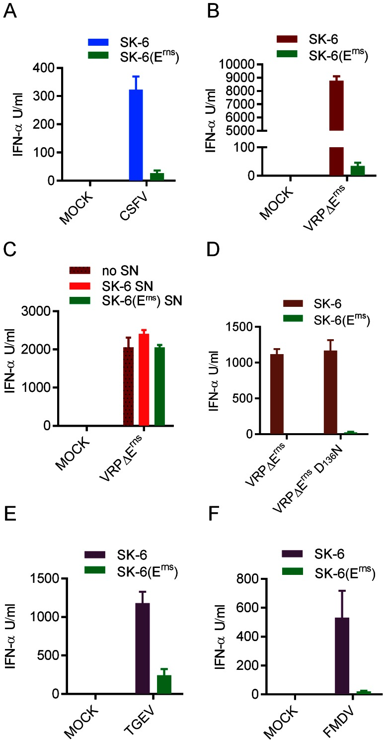 E rns disables stimulation of pDC by infected cells. A and B. IFN-α induction in pDC after stimulation with SK-6 or SK-6(E rns ) cells infected with CSFV (A) or VRPΔE rns (B). C. Lack of inhibitory activity in supernatants (SN) of SK-6(E rns ) cells. Supernatants harvested from SK-6 or SK-6(E rns ) cell cultures were added to co-cultures of enriched pDCs with MOCK- or VRPΔE rns -infected SK-6 cells at 50% (V/V) D. N pro has no impact on stimulation of pDC by infected cells. SK-6 or SK-6(E rns ) cells were infected with wild type VRPΔE rns or VRPΔE rns with the D 136 N mutation in N pro (VRPΔE rns D 136 N) abrogating the functional activity of N pro in preventing IRF3 and IRF7-mediated IFN type I responses. E and F. E rns also inhibits the activation of pDC by SK-6 cells infected with TGEV (E) and FMDV (F). SK-6 or SK-6(E rns ) cells were infected with TGEV (MOI of 10 TCID 50 /cell), or FMDV (MOI of 2.5 TCID 50 /cell), cultured for 90 min followed by addition of enriched pDC. For A to F, IFN-α in the supernatants was quantified by ELISA after 20 h of co-culture. The mean values of three replicates with standard deviation are shown. In A and B, the results are representative of five independent experiments. In C to F, the data is representative of two independent experiments.