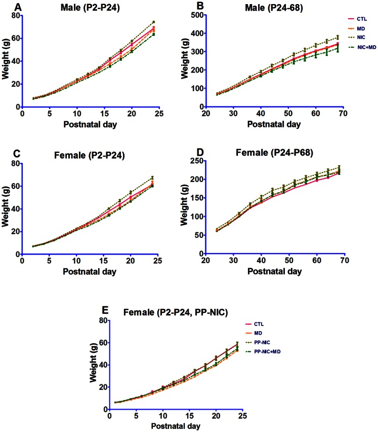 Comparative growth of nicotine-exposed and/or maternally deprived rat pups from P2–P70. The weight trend of male (A, B) and female (C, D) pups from P2–P24 (A, C) and P24–P70 (B, D) is shown. In E, animals were exposed to prenatal and postnatal nicotine (PP-NIC) until <t>P21</t> when they were weaned. MD and MD+NIC significantly reduced animal weight, in the P2–P24 groups compared to CTLs. Please see tables 1 and S1 for significance values.