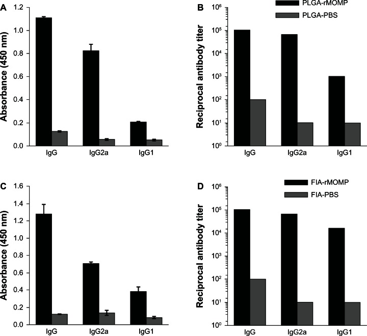 Production of Th1 and Th2 antibodies in sera from immunized mice. ( A and B ) Groups of PLGA-rMOMP and PLGA-PBS mice were immunized as indicated in the Materials and methods section. Pooled sera were collected two weeks following the last immunization and used to determine IgG, IgG2a, and IgG1 responses in PLGA-rMOMP and PLGA-PBS mice at dilutions of 1:1600 and 1:100, respectively ( A ). Also shown are the reciprocal antibody titers for IgG, IgG2a, and IgG1 in PLGA-rMOMP and PLGA-PBS-immunized mice ( B ). ( C and D ) The groups of mice were immunized following the same immunization regimen as in the Materials and methods section, except rMOMP was administered to mice in FIA. Serum IgG, IgG2a and IgG1 responses ( C ) and reciprocal antibody titers ( D ) in FIA-PBS and FIA-rMOMP-immunized mice. Notes: To determine antibody concentrations (titers), two-fold serial dilutions of serum were made and the endpoint titer was considered to be the last serum dilution with readings higher than the mean + 3 standard deviations of negative controls. Anti-rMOMP-specific antibodies were determined by enzyme-linked immunosorbent assay. Asterisk indicates a significant difference in comparison with the corresponding control ( P