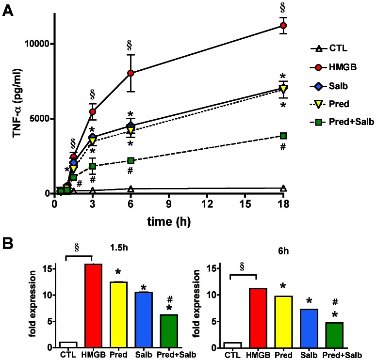 Prednisolone and salbutamol inhibit the HMGB-induced TNFα production. RAW 264.7 cells were pretreated with prednisolone (1 µM) and salbutamol (1 µM) and then exposed to HMGB1 (5 µg/ml) for various time up to 18 hours. A : TNFα secretion measured in the supernatant is plotted versus exposure length. (MEAN±SD values are shown) B : TNFα mRNA expression, normalized to glyceraldehyde 3-phosphate dehydrogenase (GAPDH), is shown as fold expression values of vehicle treated cells. (CTL: vehicle treated control, HMGB: cells exposed to HMGB1, Pred: cells pretreated with prednisolone and exposed to HMGB1, Salb: cells pretreated with salbutamol and exposed to HMGB1, Pred+Salb: cells pretreated with both prednisolone and salbutamol and exposed to HMGB1. § p