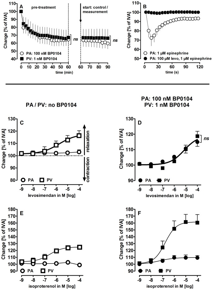 Vasodilating effects of levosimendan (levo) and isoproterenol in pulmonary vessels. A) BP0104 in PAs and PVs: ( ) PA: 100 nM BP0104 (n = 5); ( ) PV: 1 nM BP0104 (n = 5). The dashed line indicates the end of the pre-treatment and the start of the measurements. B) Levosimendan prevents epinephrine-induced contraction in PAs: ( ) epinephrine 1 µM (n = 5), ( ) levo 100 µM, epinephrine 1 µM (n = 7); C) Levosimendan in PAs/PVs without pre-constriction: ( ) PAs (n = 10); ( ) PVs (n = 11); D) Levosimendan in pre-constricted PAs/PVs: ( ) PAs (n = 9); ( ) PVs (n = 7); E) Isoproterenol in PAs/PVs without pre-constriction: ( ) PAs (n = 5) ( ) PVs (n = 5) F) Isoproterenol in pre-constricted PAs/PVs: ( ) PAs (n = 3); ( ) PVs (n = 4). A) Statistics was performed by a linear mixed model analysis. C–D) The thick solid concentration-response curve share the same EC 50 value of 5 µM. P