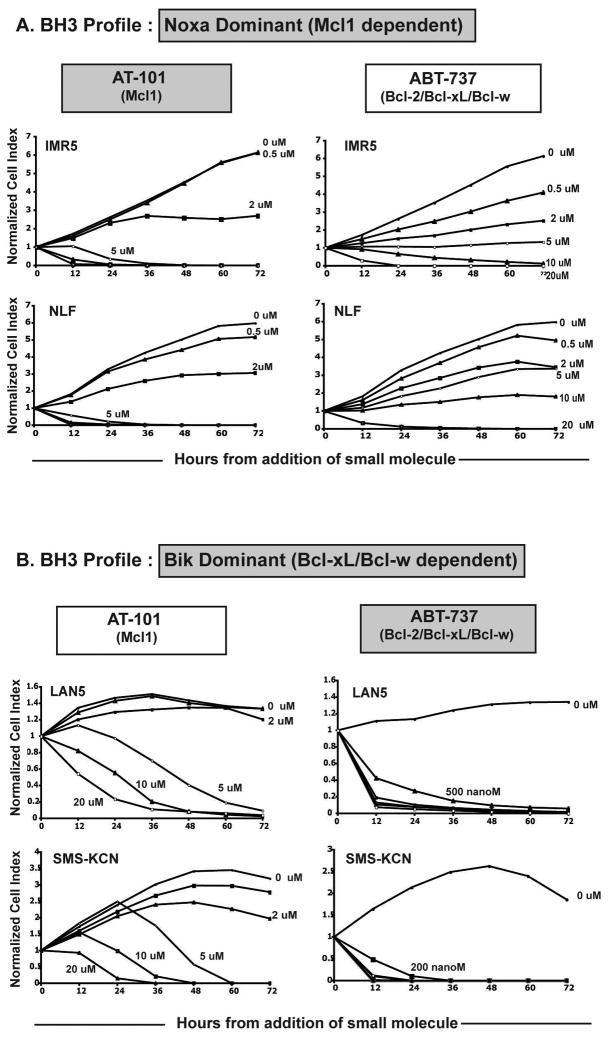 BH3 profiling predicts NB cell sensitivity to Bcl-2 family small molecule antagonists 30,000 cells were plated in 96 well plates in duplicate, allowed to settle overnight and exposed to increasing concentrations of AT-101, ABT-737 or DMSO control. Cell indexes (viable cell number) for duplicate wells are averaged and plotted as a function of time and normalized separately to the cell index reading of each well at the time just before drug addition (t=0). Cells with Mcl1 dependence were more sensitive to AT-101 (A). Cells with a Bik-dominant mitochondrial profile were exquisitely sensitive to ABT-737 (B) . Cytotoxicity curves represent the average of at least 2 separate experiments. Standard deviations between individual experiments were all less than 5% of the values plotted and are therefore not shown. uM, micromolar; nanoM, nanomolar.
