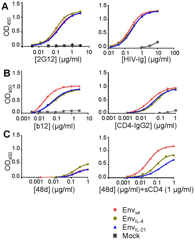 Antigenic characterization of Env IL-4 and Env IL-21 molecules. ELISA reactivity of Env IL-4 and Env IL-21 with 2G12 and HIV-Ig (A); b12 and <t>CD4-IgG2</t> (B); and 48d (CD4i) in the absence and presence of sCD4 at 1 µg/ml (C). All ELISA results are representative for at least three independent experiments using proteins derived from three independent transfections.