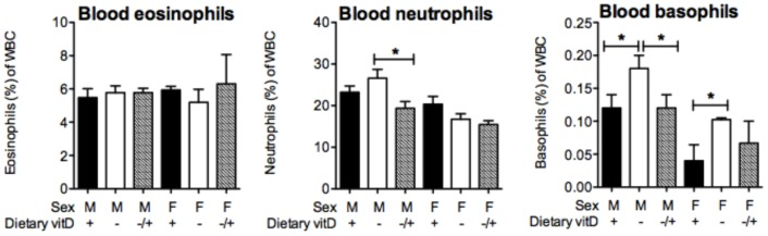 Vitamin D supplementation suppresses circulating neutrophil and basophil levels in male mice. Male and female offspring born to vitamin D-replete or -deficient mothers and maintained on the vitamin D-replete or null diets (respectively), or vitamin D-deficient offspring switched to a vitamin D-replete diet from 8 weeks of age (VitD− to vitD+, −/+), were sensitised at 12 weeks of age intraperitoneally with 1 µg ovalbumin (OVA) (0.2 mg Aluminium hydroxide (Alum)). Mice were boosted with the same OVA/Alum dose two weeks after the initial sensitisation, and one week later their airways challenged with aerosolised OVA (1% in saline). Twenty-four h after the OVA challenge, the proportions of eosinophils, neutrophils and basophils of circulating white blood cells (WBC) is shown as mean + SEM for n = 5 mice/treatment for a representative experiment.