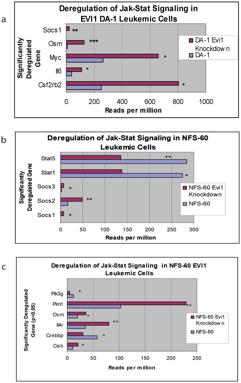 Significant deregulation of the Jak-Stat signaling pathway. Numerous genes involved in the Jak-Stat pathway were found to be aberrantly expressed in both the EVI1 leukemic cell lines. The x-axis is the significantly downregulated gene and the y-axis denotes reads per million on RNA-Seq analysis. a ) In DA-1 Evi1 overexpressed cells, Socs1 had a 5.7-fold decrease (p = 0.001), Osm had a 13-fold decrease (p = 0.0003), Myc had a 2.5-fold decrease (p = 0.04), Il6 had a 2.8-fold decrease (p = 0.02), Csf2rb had a 3.2-fold decrease (p = 0.02). b) In NFS-60 Evi1 overexpressed cells, Stat5 had a 2.1-fold increase (p = 0.01), Stat1 had a 2.0-fold increase (p = 0.02), Socs3 had a 3.7-fold decrease (p = 0.03), Socs2 had a 3.0-fold decrease (p = 0.01), Socs1 had a 4.5-fold decrease (p = 0.02). c) In NFS-60 Evi1 overexpressed cells, Pik3c2g had a 2.8-fold increase (p = 0.04) Pim1 had 2.2-fold decrease (p = 0.01), Osm had a 1.8-fold decrease (p = 0.04), Il4r had a 2.3-fold decrease (p = 0.01), Crebbp had a 1.9-fold increase (p = 0.05), Cish had a 2.0-fold decrease (p = 0.05).