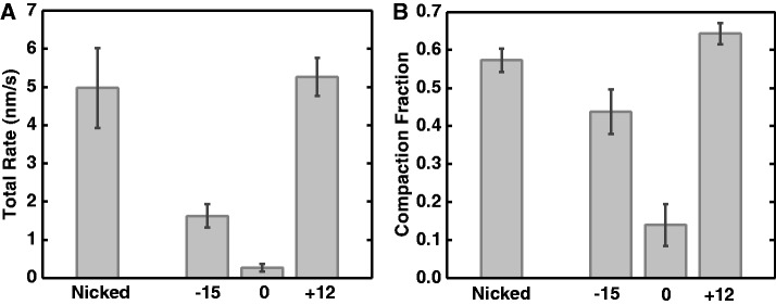Supercoiling dependence of DNA folding reaction by cohesin SMC1/3. ( A ) Total compaction rate. Positively supercoiled and nicked DNAs had the fastest rates of folding. Negatively supercoiled DNA was compacted more slowly, while un-nicked DNA with ΔLk = 0 was folded only very slowly. ( B ) Total compaction fraction showed a similar dependence on DNA topological state; note un-supercoiled un-nicked DNA was only slightly compacted. For each group of DNA, the number of experiments n = 15, 19, 15 and 15 for nicked DNA, ΔLk = −15, 0 and +12 DNA, respectively.