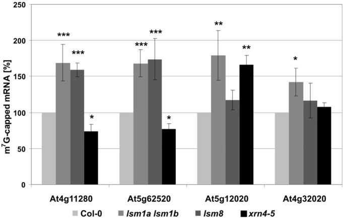 mRNAs stabilized in lsm mutants are 5′ capped. Immunoprecipitation of total RNAs with monoclonal anti-cap antibodies followed by <t>qRT-PCR</t> analysis of selected AtLSM1 (At4g11280, At5g62520, At5g12020, At4g32020), AtLSM8 (At4g11280, At5g62520) and AtXRN4 (At4g11280, At5g62520, At4g32020) substrates. Histograms represent the level of immunoprecipitated transcripts, where the value for Col-0 was arbitrarily set to 100. Values with standard deviations (±SD) were obtained from <t>three</t> independent experiments; * P