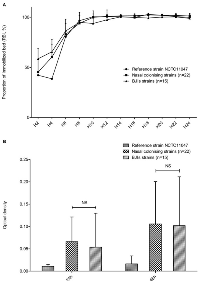 Evaluation of biofilm-formation ability of S. epidermidis clinical isolates. A. Kinetics of early biofilm formation was assayed by the Biofilm Ring Test method for the reference strain NCTC11047 and for infective (n = 15) and colonizing (n = 22) S. epidermidis strains. B. Quantification of mature biofilm formation after 24 and 48 h by the crystal violet staining method for the S. epidermidis reference strain NCTC11047 and 37 clinical isolates.