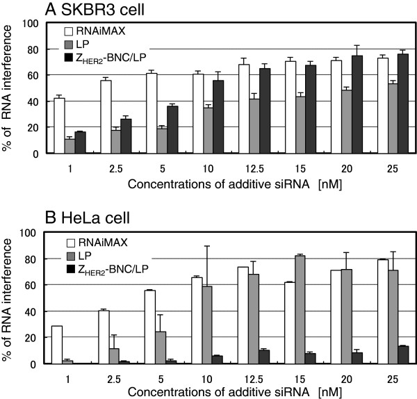 Quantification of RNAi in HER2-positive SKBR3 (A) and HER2-negative HeLa (B) cells treated by siRNA combined with RNAiMAX (white bars), LPs (gray bars) and Z HER2 -BNC/LP complex (black bars). The GFP expressions of the cells were analyzed using a flow cytometer and results are expressed as a percentage of the GFP-expressing cellular quantity in untreated controls. The x-axis represents the final concentration of siRNA in the medium adjusted to 2 ml.