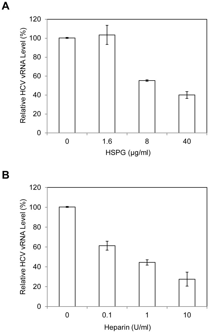 Inhibition of HCV1b attachment to DHHs by purified HSPG (A) and Heparin (B). The HCV1b was pre-incubated with varying amounts of HSPG or Heparin for 1 hr on ice prior to adding to day-11 DHHs in 12-well cell culture plates as described in materials and methods . After incubation on ice for 2 hrs, the unbound HCV was removed by washing cells with PBS for three times. The vRNA of the cell-bound HCV was extracted with Trizol reagent (Invitrogen). The levels of HCV1b vRNA were determined using the same real-time RT-qPCR method as in Fig. 1.
