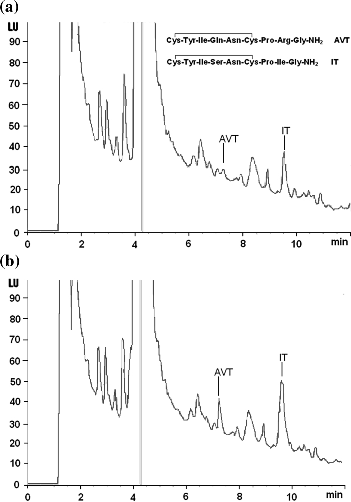Representative HPLC-FL chromatograms of a urophysial sample of round goby and b the same sample spiked with standard AVT (6.6 pmol/mL) and IT (6.8 pmol/mL). Chromatographic conditions: Agilent Zorbax Eclipse XDB-C18 column (150 mm × 4.6 mm I.D., 5 μm particle); elution: solvent A (0.1 % TFA in H 2 O), solvent B [0.1 % TFA in acetonitrile : H 2 O (3:1)], linear gradient 45–80 % of eluent B in 12 min; flow rate 1 mL/min; column temperature 20 °C; injection volume 40 μL; detection: FL, excitation 470 nm, emission 530 nm