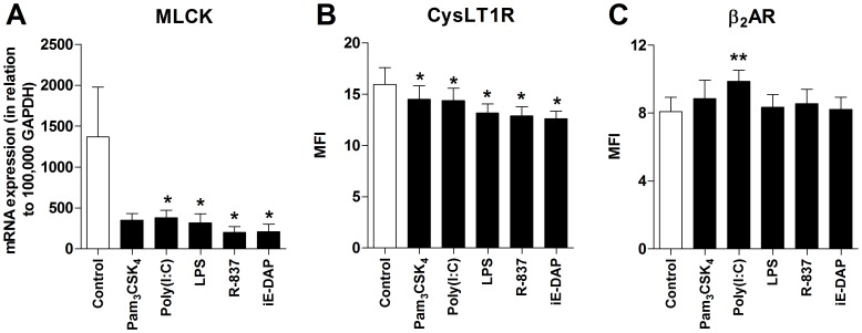 PRR activation affects the contractile state. HASMCs were cultured for 24 h in the absence or presence of Pam 3 CSK 4 (1 µg/ml), poly(I:C) (10 µg/ml), LPS (100 ng/ml), R-837 (5 µg/ml) and iE-DAP (10 µg/ml). ( A ) The cells were harvested and analyzed for levels of myosin light chain kinase (MLCK) mRNA using real-time RT-PCR. Data are given in relation to GAPDH as 2 −ΔCt ×10 5 . ( B ) Mean fluorescence intensity (MFI) of the cysteinyl leukotriene 1 receptor (CysLT1R) and ( C ) β 2 -adrenergic receptor (β 2 AR) expression using flow cytometry. Data are presented as mean ± SEM (n = 7). *, p