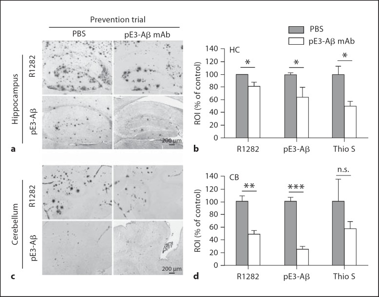 In a prevention study initiated during the early stage of plaque deposition, weekly passive immunization of APPswe/PS1ΔlE9 mice with anti-pE3-Aβ mAb07/1 from 5.8 to 13.8 months of age significantly reduced pE3-Aβ as well as general Aβ (R1282 IR) and fibrillar amyloid (Thioflavin S) deposition in the hippocampus ( a , b ) and cerebellum ( c , d ) compared to that in PBS control mice. Immunohistochemical results ( a , c ) and Thioflavin S labeling were quantified by image analysis ( b , d ). Absolute values are provided in table 1. Scale bars, 200 µm. p values: * p > 0.05; ** p > 0.01; *** p > 0.001; n.s. = nonsignificant (p = 0.089).