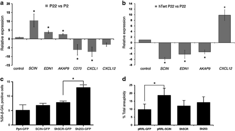 Replicative senescence in hMSCs alters the expression of ploidy-controlling genes. ( a ) Taqman qRT-PCR quantification of mRNA transcripts for SCIN , EDN1 , AKAP9 , CD70 , CXCL1 and CXCL12 in hMSCs at passage 22 versus passage 2 (control). SCIN , EDN1 and AKAP9 were significantly upregulated at passage 22 compared with passage 2 (10.46±3.65, 3.90±0.72 and 2.64±0.39-fold increases, respectively), whereas CXCL1 and CD70 were significantly downregulated (−6.22±2.99 and −7.31±2.68, respectively) ( P