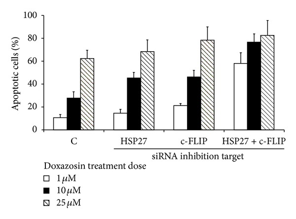 Apoptotic indices in <t>siRNA</t> (Hsp27, c-FLIP) transfected cells after 48 hours at each dosage of doxazosin treatment (1, 10, and 25 μ M).