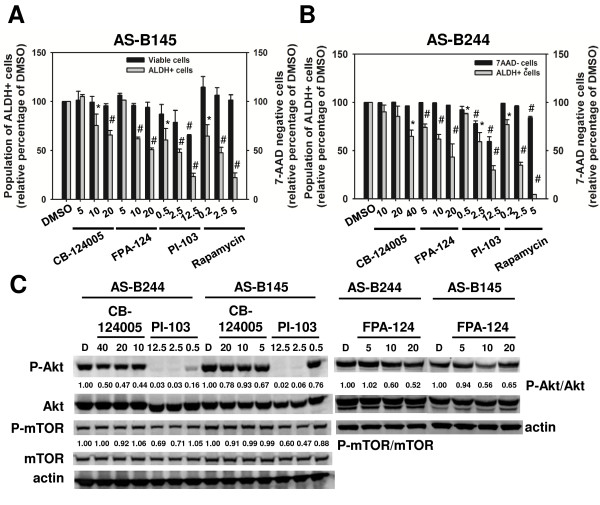 Targeting the PI3K/Akt/mTOR pathway inhibits the cancer stem cell population of breast cancer cells . (A) AS-B145 cells or (B) AS-B244 cells were treated with small molecule inhibitors of phosphoinositide-3-kinase (PI3K)/mammalian target of rapamycin (mTOR) (PI-103), Akt (CB-124005 or FPA-124) or mTOR (rapamycin) for 48 hours and the aldehyde dehydrogenase (ALDH) + cell population within 7-aminoactinomycin D (7-AAD)-negative cells was determined with Aldefluor assay and displayed as the relative percentage of dimethylsulfoxide (DMSO) control. * P