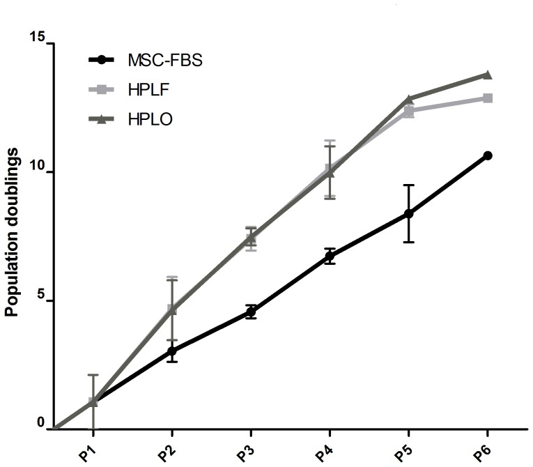 Cumulative population doublings of MSC after culture in FBS, HPLF or HPLO. MSC were cultured in culture media supplemented with 10% of FBS, platelet lysate from fresh platelet concentrates (HPLF) or lysate from expired platelet concentrates (HPLO). Population doubling assay was performed at the end of every passage for a total of six passages (P1–P6, n = 3). MSC cultured in either HPLF or HPLO consistently had higher numbers of population doublings at the end of every passage compared to MSC cultured in FBS. By the end of the sixth passage cumulative population doublings were 13.77±0.77 CPD for HPLO, 12.77±0.12 CPD for HPLF and 9.50±1.14 CPD for FBS supplemented cultures, respectively.