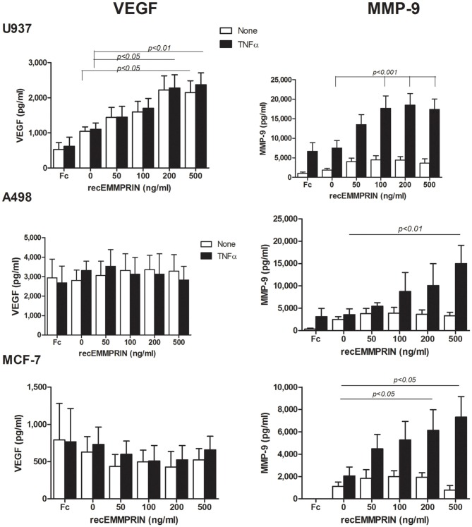 Effect of recombinant EMMPRIN on the secretion of MMP-9, VEGF, and EMMPRIN . 5 × 10 5 A498, MCF-7 or U937 cells were incubated separately in a serum-free medium with or without TNFα (1 ng/ml) for 48 h, and with the addition of increasing amounts of recombinant EMMPRIN or the IgG Fc fragment (at 200 ng/ml). Concentrations of MMP-9 and VEGF were determined in the supernatants using ELISA ( n = 7).