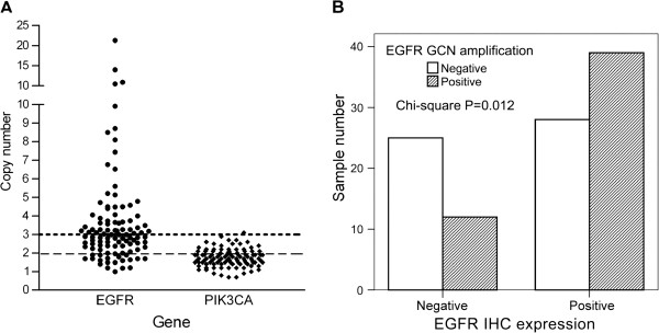 Gene copy numbers of the samples. ( A ) A scattergram of the EGFR or PIK3CA results are shown. Each dot represents the specific GCN of the individual specimen analyzed using real-time PCR and the C -2∆tt method. Dots above the upper dotted line have copy number of more than 3. Dots above the lower dashed line have copy number of more than 2. ( B ) An association study of EGFR expression and GCN amplification is shown by the bar chart. The empty and solid bars represent negative or positive GCN amplification. The P level was assessed through Chi-Square analysis.