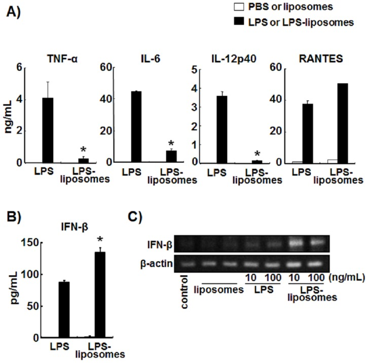Lipopolysaccharide (LPS)-liposomes induce interferon (IFN)-β production but not inflammatory cytokines in bone marrow-derived dendritic cells (BMDCs). (A) BMDCs from wild-type (WT) mice (1.5×10 5 ) were stimulated with LPS (100 ng/mL) or LPS-liposomes (100 ng/mL) for 2 h (TNF-α) or 24 h (IL-6, IL-12p40, and RANTES). Cytokine levels were determined by ELISA. (B) BMDCs from wild-type (WT) mice (1.5×10 5 ) were stimulated with LPS (100 ng/mL) or LPS-liposomes (100 ng/mL) for 9 h. IFN-β levels were determined by ELISA. (C) BMDCs (1×10 6 ) from WT mice were stimulated with LPS or LPS-liposomes (10 or 100 ng/mL) for 4 h and expression of IFN-β and β-actin mRNAs was determined by reverse transcription-polymerase chain reaction. PBS was control for LPS and liposomes was control for LPS-liposomes (Open columns). Data in A and B are average of three independent experiments. The values represent means ± S.E.M * P