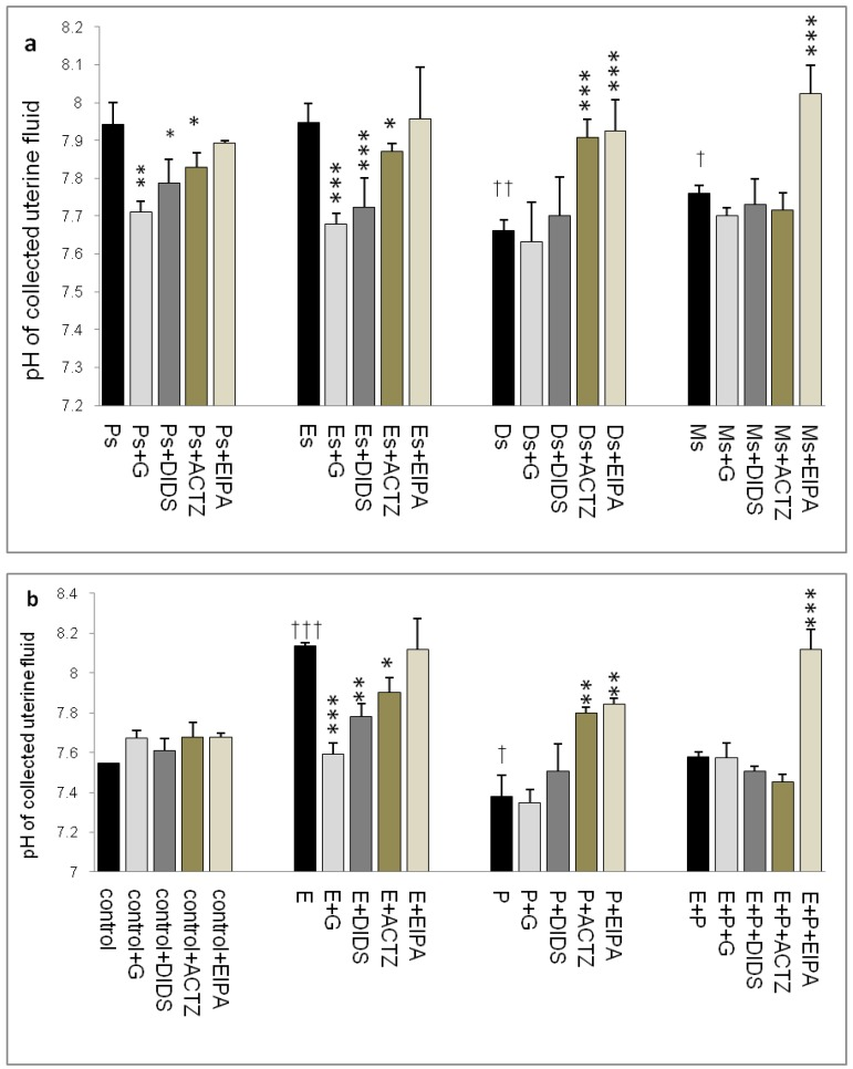 Changes in uterine fluid pH in (a) rats throughout oestrous cycle phases and (b) steroid treated ovariectomized rats. The pH in the presence of different protein channel/enzyme inhibitors was determined. Higher pH was noted at Es and Ps and following E treatment, while lower pH was noted at Ds and following P treatment. Glibenclamide, DIDS and ACTZ administration caused a decrease in pH under E influence, while ACTZ and EIPA administration caused an increase in pH under P influence. Meanwhile, in E+P group, the pH was not significantly differing from the control. EIPA caused pH increase at Ms and following E+P treatment. E: 0.2µg 17β-oestradiol, P: 4mg progesterone, E+P: 0.2µg 17β-oestradiol + 4mg progesterone. Ps: proestrus, Es: estrus, Ms: metestrus, Ds: diestrus, G: glibenclamide, ACTZ: acetazolamide, DIDS: 4,4'-diisothiocyanatostilbene-2,2'-disulfonic acid disodium salt hydrate and EIPA: 5-(N-Ethyl-N-isopropyl)-amiloride. † as compared to Es or control, * as compared to the group without inhibitors. (*, † p